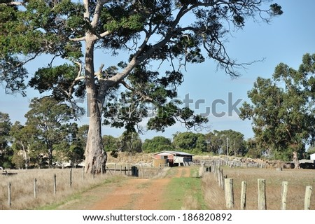 gravel road leading to brick outhouse past big gum tree