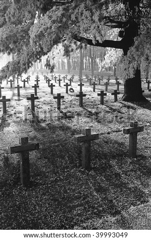 graveyard with rows of crosses and trees during first winter frost monochrome film grain - stock photo