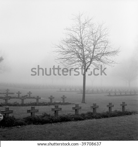 graveyard with rows of crosses and trees in the autumn mist monochrome film grain - stock photo