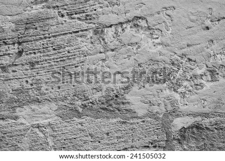 GRAY FOSSIL STONE TEXTURE - stock photo