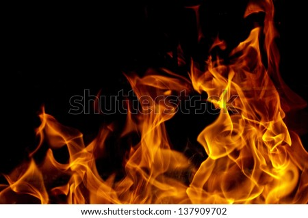 Great flame photo - stock photo