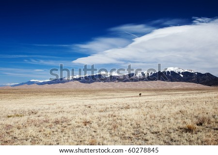 Great Sand Dunes - stock photo