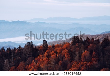 Great Smoky Mountains National Park, Tennessee, USA - stock photo