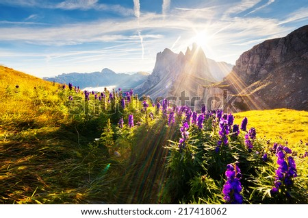 Great view on the  Odle - Geisler group. National Park valley Val Gardena. Dolomites, South Tyrol. Location Ortisei, S. Cristina and Selva Gardena, Italy, Europe. Dramatic morning scene. Beauty world. - stock photo