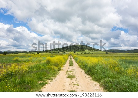 Greek farmland road with blue cloudy sky