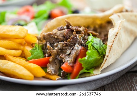 Greek Gyros with Fries and Salad - stock photo