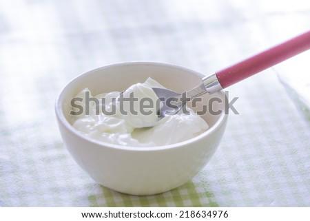 greek yogurt  - stock photo