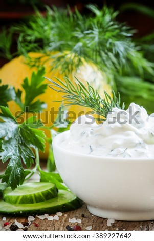 Greek yogurt sauce, cucumber and herbs, selective focus - stock photo
