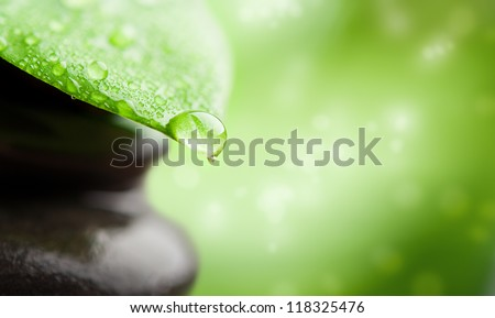 green abstract background  spa with leaf and water drop - stock photo