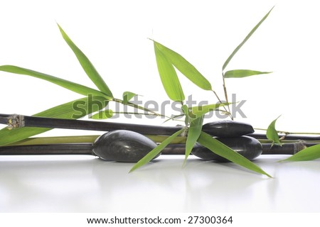 Green and black bamboo with black pebbles arrangement
