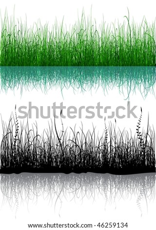 Green and black grass isolated on white - raster version