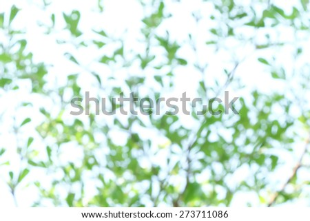 green and blue abstract defocused background - stock photo