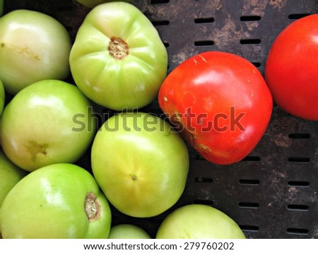 Green and red tomatoes in black crate at farmers' market. - stock photo