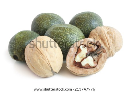 Green and ripe walnuts on white background - stock photo
