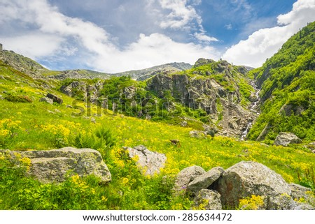 Green and yellow blooming meadow and steep stream on rocky ground. Spring and summer in the italian Alps, with white clouds and blue sky. - stock photo