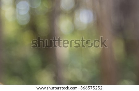 green and yellow bokeh from tree, Bright yellow and green sunny trees fall bokeh background. - stock photo