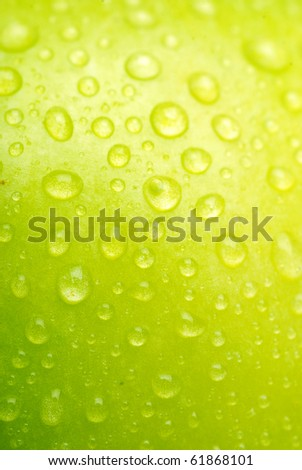 Green apple close-up with water drops - stock photo