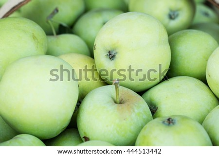Green apples for sale at the farmers market in Asheville North Carolina