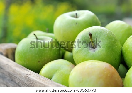 Green apples in a wooden box. - stock photo