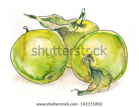 Green apples. Still life. Watercolor painting. Sketchy style.watercolor painting - stock photo