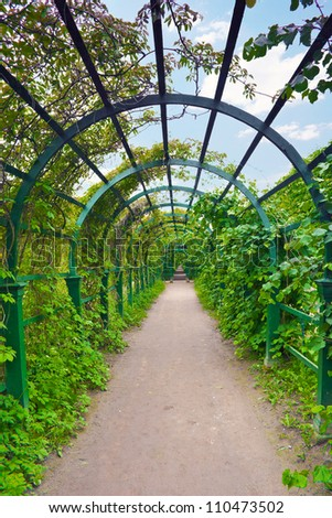 Green archway in a garden. Peterghof.St.Peterburg - stock photo