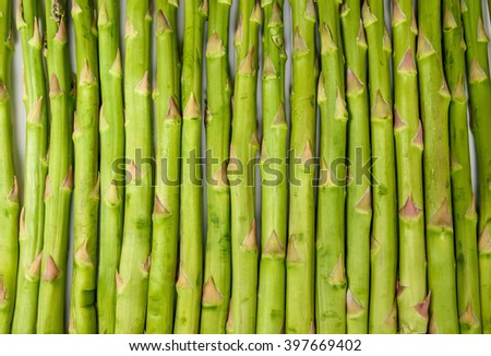 Green asparagus bunch isolated on white background - stock photo