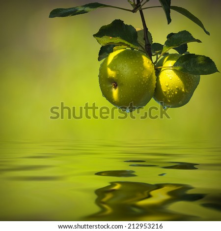 Green autumn apples reflected in water - stock photo