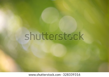 Green background from out of fucus grass - stock photo