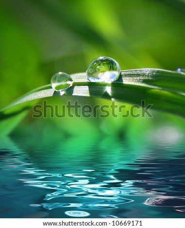 green background with grass - stock photo