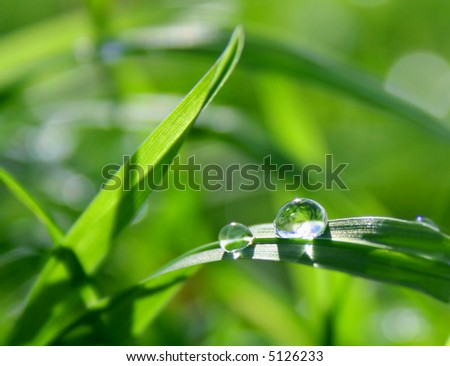 green background with gross - stock photo