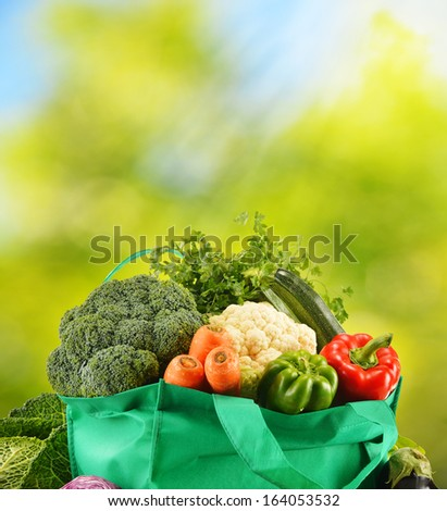 Green bag with variety of fresh organic vegetables in the garden - stock photo