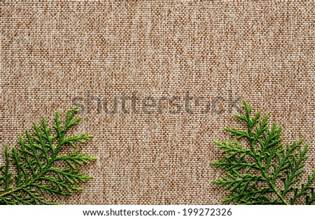 Green baison on brown fabric background