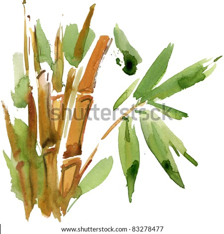 Green Bamboo, painted in watercolor in oriental style - stock photo