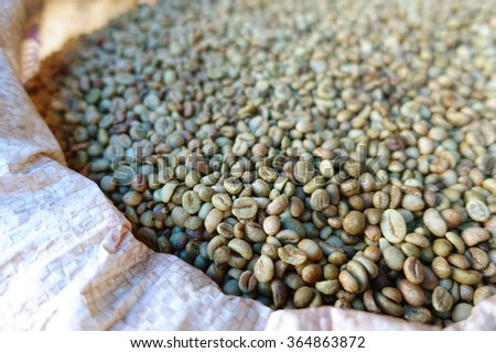 green bean coffee beans for background