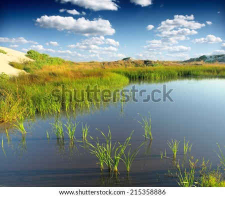 Green bog - stock photo