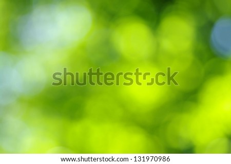 Light Green Abstract Background Images Green Bokeh Abstract Light
