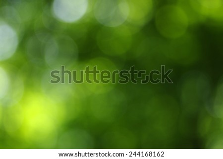green bokeh abstract light background - stock photo