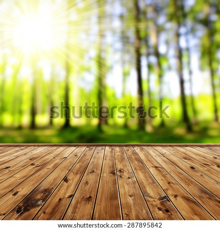 Green bokeh in the forest with wooden board - stock photo