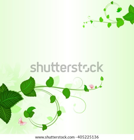 Green branches with leaves spring background with copy space. - stock photo