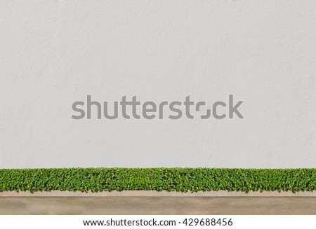 green bush fence and white concrete wall and brown concrete background - stock photo