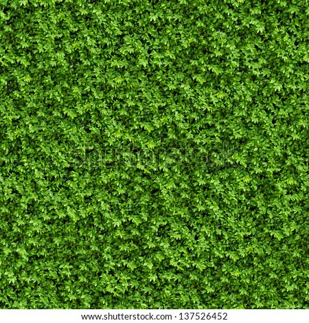Green Bush. Seamless Tileable Texture. - stock photo