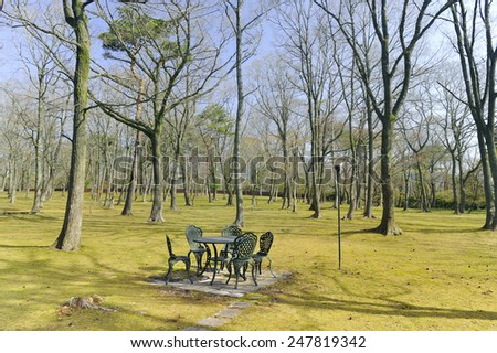 Green chairs in the garden - stock photo