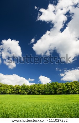 Green city park with trees. Beautiful summer landscape - stock photo
