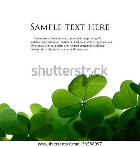 Green clover leafs border with space for text. - stock photo
