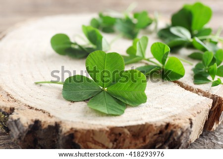 Green clover leaves on a piece of wood, closeup - stock photo