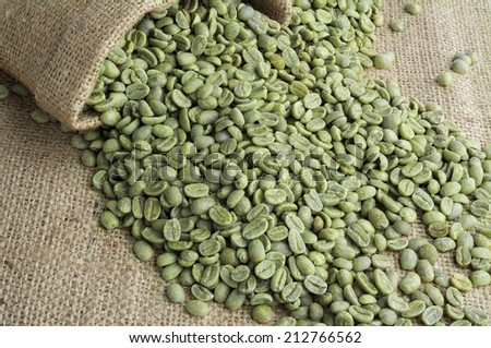 Green coffee beans in burlap sack on burlap surface - stock photo