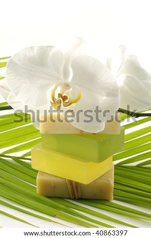Green color bath soap and orchid on palm - stock photo