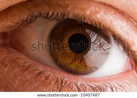 Green colored male eye extreme macro - stock photo