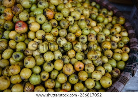 Green crab apple (Tao Meo in Vietnamese), fruit in mountainous region in Vietnam, It used to soak into alcohol.
