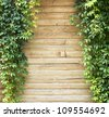 Green creeper plant, plank wall  background - stock photo